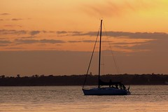 Sailing into the sunset (pauline_iow) Tags: sunset sea sky orange cloud water silhouette yacht isleofwight solent isle tranquil wight naturesfinest digitalcameraclub