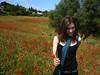 unikoista (aye.) Tags: flowers flores tree girl poppies campo amapolas poppiesfield