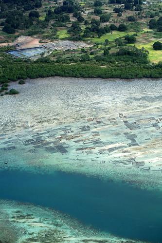 aerial Kiungoni seaweed farms