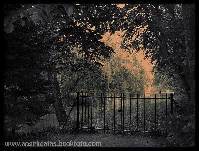 The forbbiden garden_Francia 0506_2_IMG_0425cmca