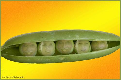 Peas In A Pod. Like Peas In A Pod