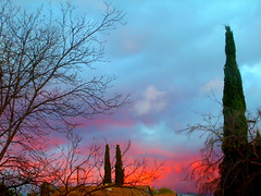 Sunset (KYin1221) Tags: california blue trees sunset red sky usa sun clouds evening losangeles afternoon cloudy dusk kyphotography lostinlifeagain