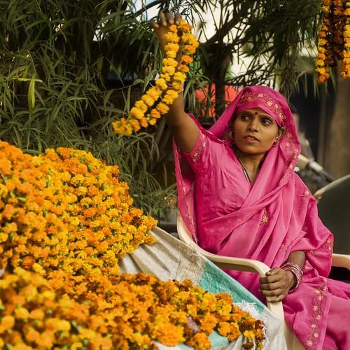 Flowers of Diwali in India