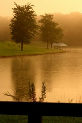 Thunderstorm Sunset (todd_young) Tags: sunset rain 50mm golden pond picasa gimp thunderstorm canadageese floydsknobbs