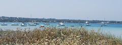Estany Pudent, Formentera (Paul_Masters) Tags: holiday sunshine boats spain mediterranean sailing lagoon formentera balearics