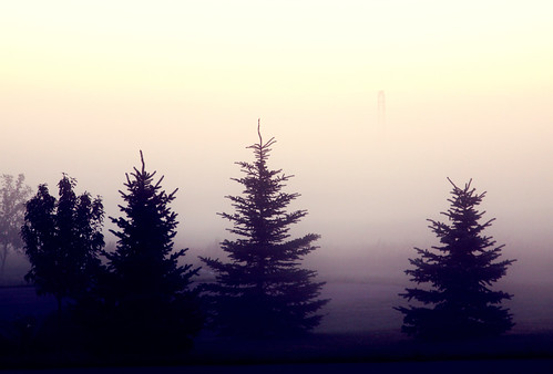 foglifting3