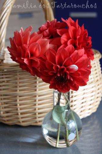 unha dalia especial nun floreiro especial