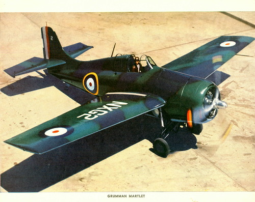Warbird picture - British Martlet,Grumman F4F