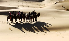 ca-mels (brennannn) Tags: canon sand shadows desert inner mongolia camels riders