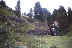 Scan10275 (lucky37it) Tags: e alpi dolomiti cervino