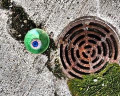 eye on the prize (-liyen-) Tags: ball moss drain patio explore eyeball d300 interestingness225 activeassignmentweekly nikond300 agcgsweepwinner