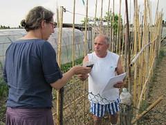 Maggio, distribuzione compost 3