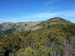 Crêtes de Marignana : vue des crêtes entre Capu di Santa Degna et Capu a e Macenule