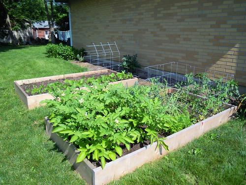 The Garden '11
