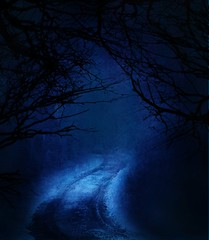 Premade BG 74 (~Brenda-Starr~) Tags: road trees cold texture night forest photoshop dark scary woods path background stock creepy spooky creativecommons resource textured cclicense premade bluetones brendastarr freeforuse attributionrequired backgroundsonly thestockyard
