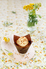 Peanut Butter Cupcake (Мiuda) Tags: american background baking brown butter buttercream cake celebration chewy chip chocolate chocolatechips cream crispy cuisine cup cupcake decorated delicious dessert easter fast filling floral flowers food frosting gourmet halloween holidays homemade icing morning muffin muffins nobody one paper pastry peanut peanutbutter snack sugar summer sweet tasty topping traditional walnuts yellow canon foodphotography foodphoto