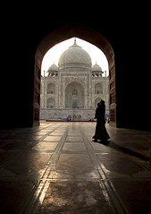 (divya babu) Tags: india up tajmahal agra