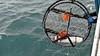 Crab Pot Sensor 2