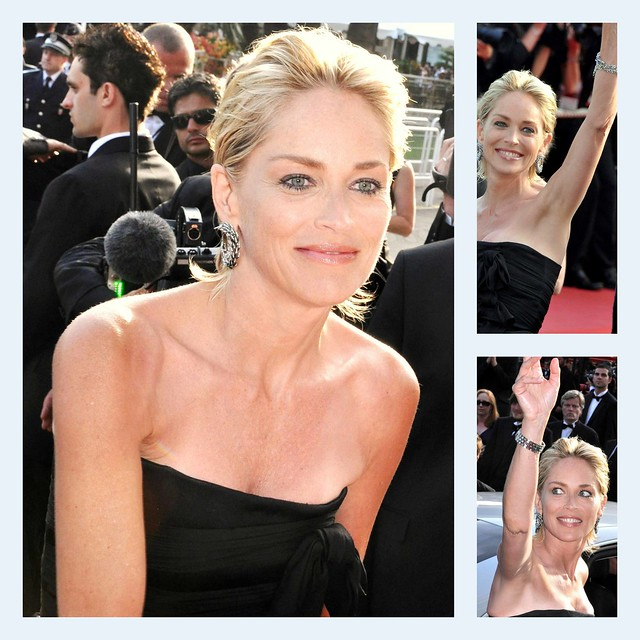 sharon stone-2009 by BIBI1962