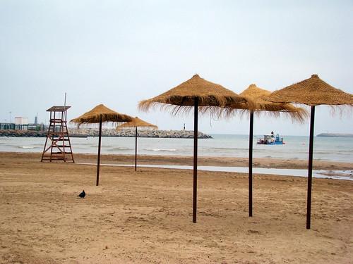 Draga en la playa 010