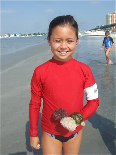 Acadia and a handful of sea urchins!