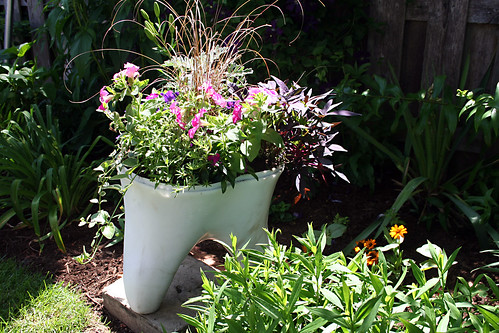 Tooth Planter