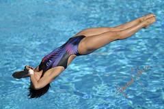 Wang Han (gongolo) Tags: roma cina tuffo tuffi wanghan 13thfinaworldchampionships mondialidinuotofinaroma09 womens1mspringgboard finalefemminiletrampolino1metro