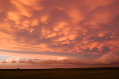Mount Horeb Sunset (pchgorman) Tags: wisconsin clouds landscapes july sunsets mounthoreb wisconsinthunderstorms