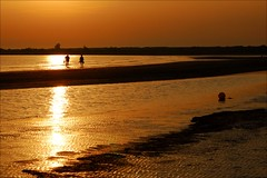 In Line with Life (Abra K.) Tags: sea people italy sunrise seaside couple poetry poem silhouettes poesia sojourn caorle deniselevertov summerdream2009