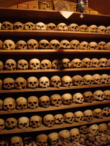 Meteora Skulls
