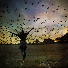 fly like a bird (.bella.) Tags: life sunset portrait sky girl birds self freedom fly flying wings colours running towards day199 365days