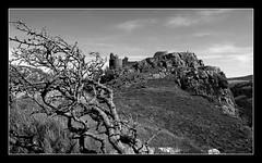 Carreg Cennen Castle (livin the dream*) Tags: tree southwales wales countryside blackwhite carmarthenshire carregcennencastle welshflickrcymru wfccarreg2009