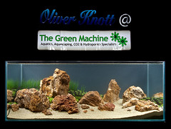 Oliver Knott Demo Tank - Green machine (Black Background) (Stu Worrall Photography) Tags: fish green nature demo aquarium ada day oliver tank machine knott aquascape planted aquascaping tgm thegreenmachine stuworrall knottmachine