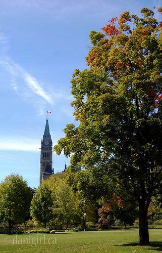 244b:365 Postcard Parliament