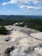 Another view from the summit (Joynes, North Carolina, United States) Photo