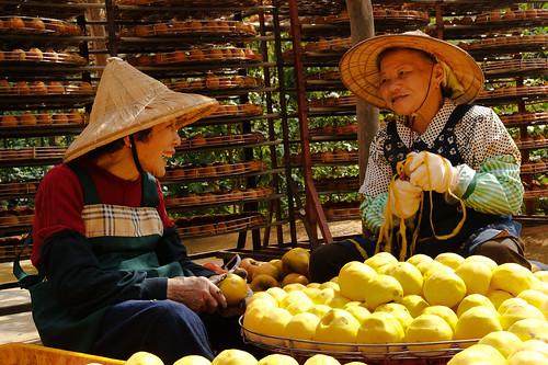 兩位80有餘的長者,在柿棚下用傳統的刀具削柿子