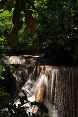 Aqua Azul (2) (Nikole Bouchard) Tags: landscape mexico waterfall jungle chiapas aquaazul