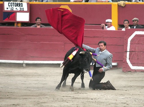 Enrique Sifuentes en Acho 2009