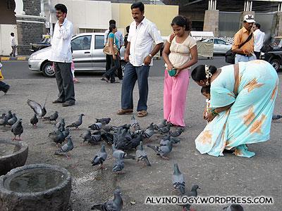 More people feeding pigeons