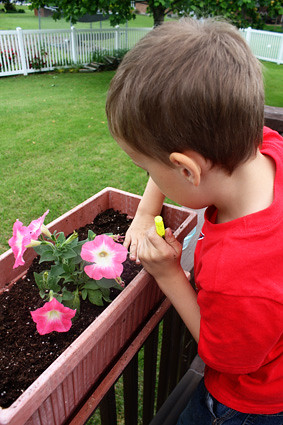 Nathan-putting-seeds-in-dirt