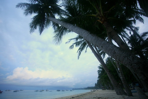 White beach before sunrise