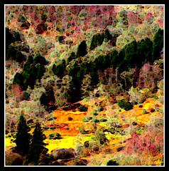 The Hill in Autumn (abernmf1) Tags: uk autumn trees art fall geotagged scotland arty hill digitalart perthshire 1001nights aberfeldy paintshoppro9 abernmf1