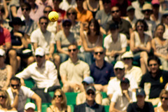 13.The ball @ Roland Garros 2009 (Doudou) Tags: people paris france men public ball court dof atp sunny tommy tennis roland terre players roger simple haas philippe federer professionnel garros battue messieurs internationaux chatrier
