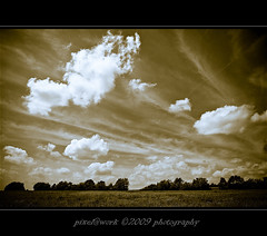 Today was a fantastic day (oliver's | photography) Tags: trees nature sepia photoshop canon eos flickr raw image  adobe copyrighted digitalcameraclub pixelwork canoneos50d sigma1770mmf2845dchsm grouptripod panoramafotogrfico pixelwork09photography oliverhoell todaywasafantasticday theacademytreealley allphotoscopyrighted