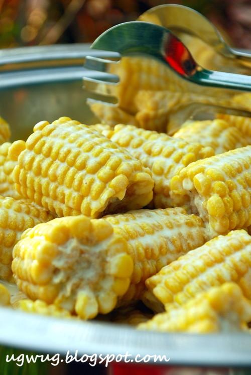 Corn on <span class=
