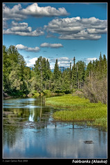 Fairbanks (Alaska) (Juan C Ruiz) Tags: trees usa alaska landscape paisaje rivers rios fairbanks concordians