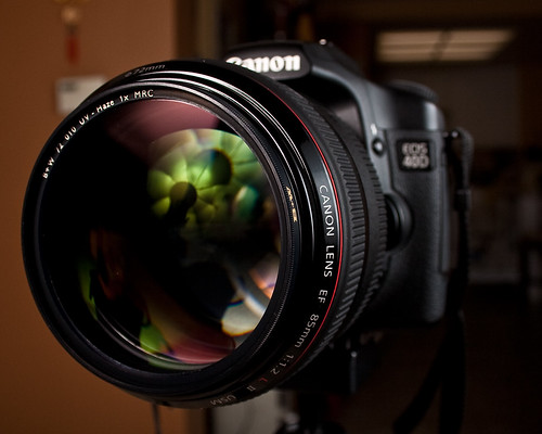 July 16 - The Spiffy New Lens