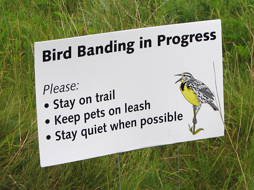 Banding Sign