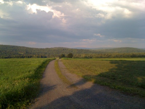 evening_road