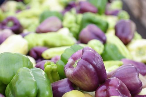 220:365 :: pick a purple pepper